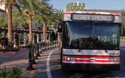 All new bus service to Disney Springs!