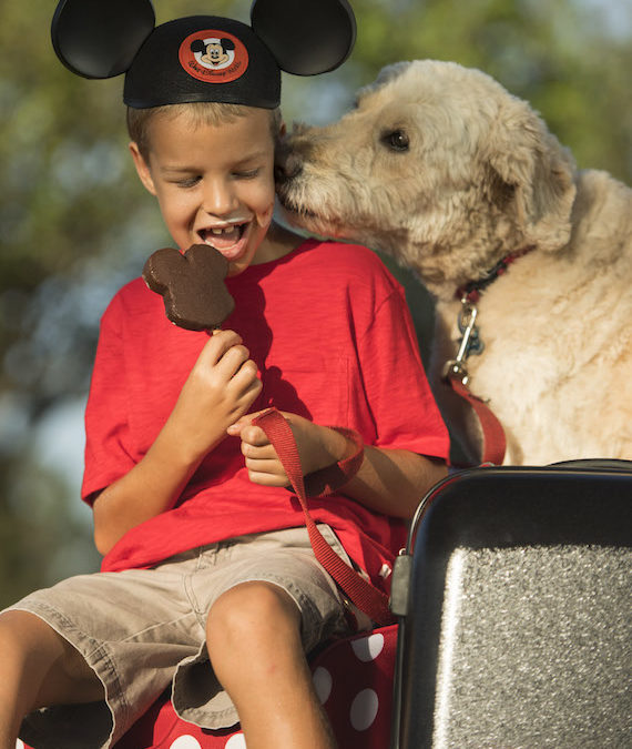 DOGS WELCOME AT SELECT WALT DISNEY WORLD HOTELS STARTING OCT. 15